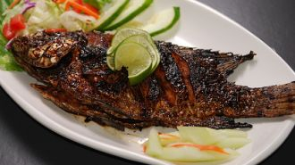 Fish recipe aleppofood for Fish cooking recipes